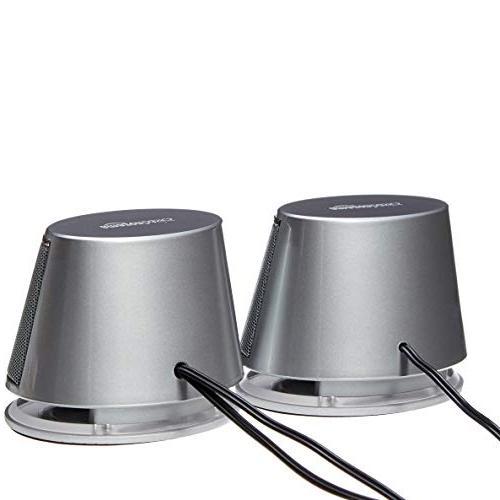 AmazonBasics with | Silver