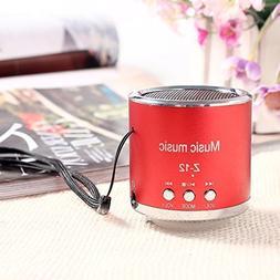 DMYI Z12 Wireless Speaker Amplifier FM Radio USB Micro SD TF
